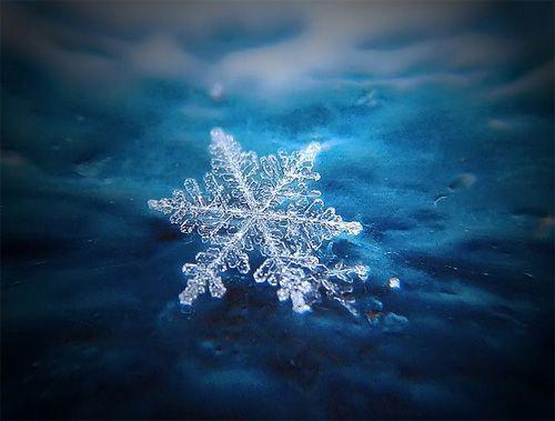 雪の結晶の写真