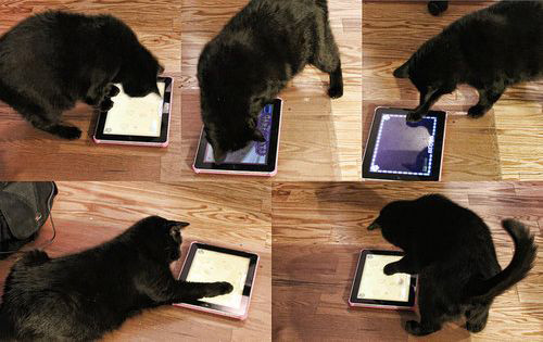 iPadを放ったままにしておいたら、こうなってた
