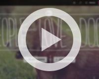 thumb_video