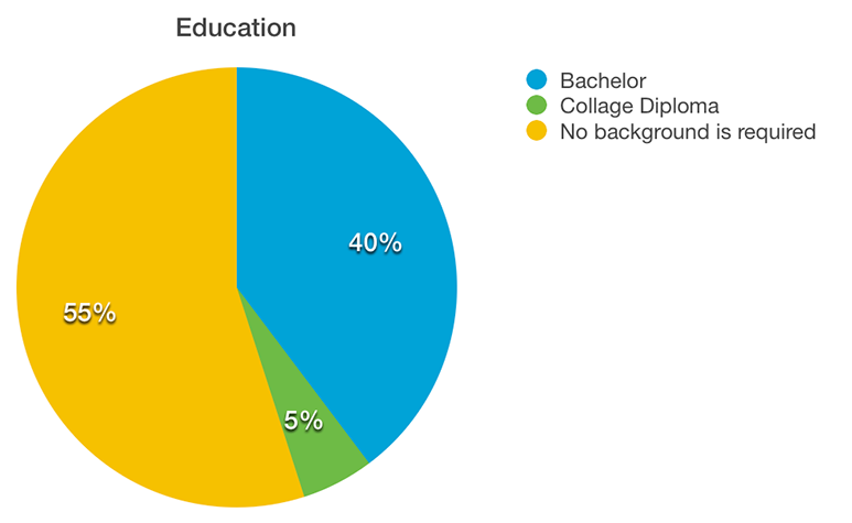 Piechart of required educational background for web designers