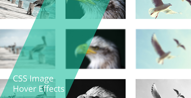 css-image-hover-effects