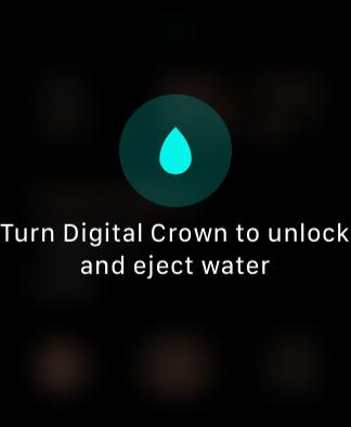 Apple Watch 画面ロック